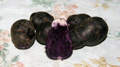 Картофель Бержерак