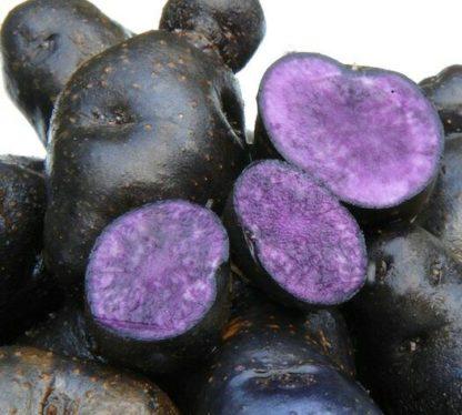 Фиолетовый картофель Конго