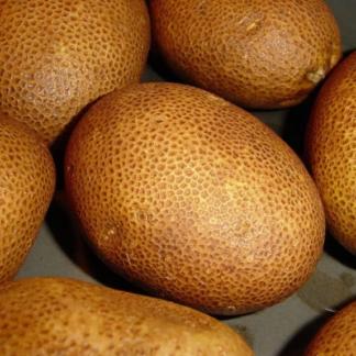 Купить картофель Киви