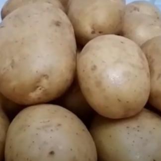 Картофель Аризона